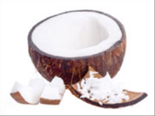 Kokosový olej, AWA shop