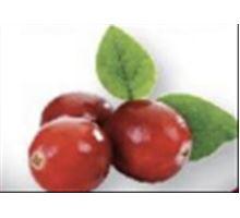 AWA superfoods sušená brusinka mletá RAW 100g