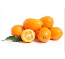 Exotické citrusové ovoce Kumquat a jeho zdravotní benefity
