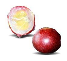 Camu Camu tekutý extrakt z plodov RAW 200 ml