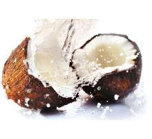 Prínosy kokosového oleja