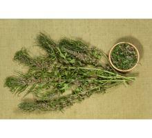 Salvia Paradise Srdcovník všeobecný vňať 70 g